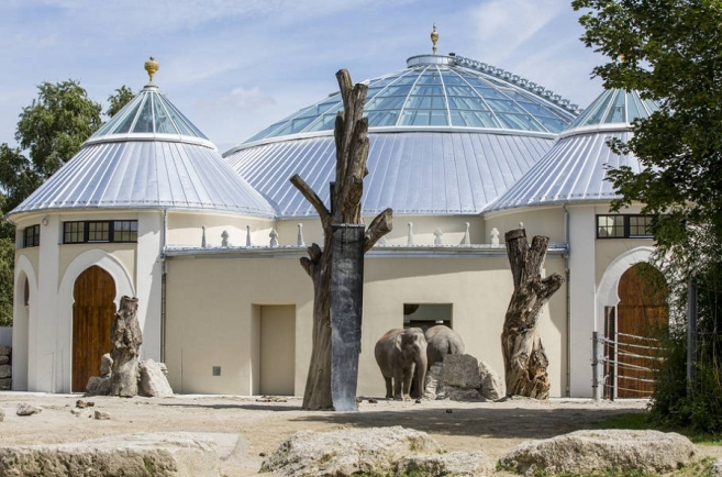 Munich Zoo's Elephants Move to New Home
