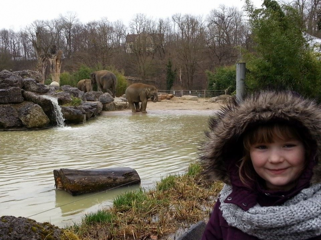 Hellabrunn Zoo in Munich: It is More Like a Farm than a Zoo, Daddy